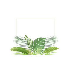 exotic tropical leaves banner poster wedding vector image