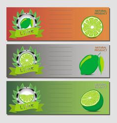 for ripe fruit green lime vector image