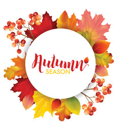 frame with colorful autumn leaves vector image
