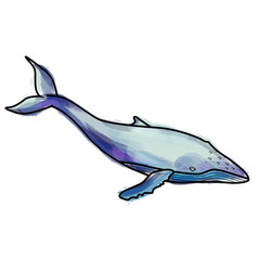 Grunge humpback whale vector
