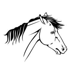 horse profile portrait vector image
