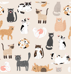 Kitty seamless pattern vector