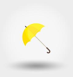 Rainwater umbrella vector