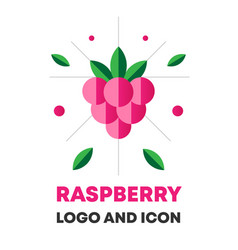 raspberry icon logo berry vector image