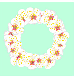 White plum blossom flower wreath on green mint vector