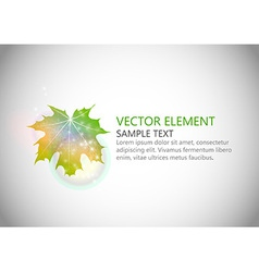 background autumn single leaf text green vector image