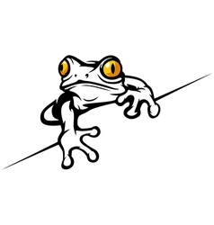 Frog cool vector image