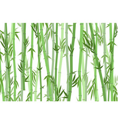 cartoon bamboo forest landscape background vector image