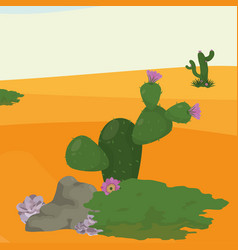 desert landscape cartoon vector image