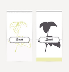 Hand drawn basil in outline and silhouette style vector