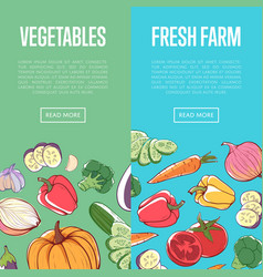 Natural eco farming flyers with vegetables vector
