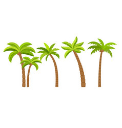 palm tree island coconut cartoon icon vector image