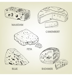 Realistic graphic cheese collection vector image