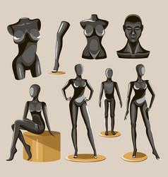 retail window display black realistic fashion body vector image