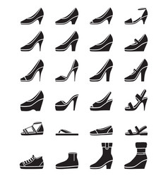 set of different types of womens shoes vector image