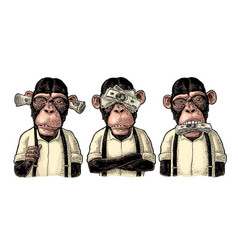 three wise monkeys not see not hear not speak vector image