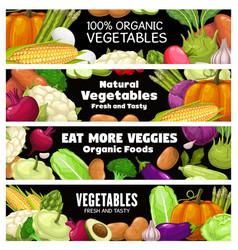 vegetables banners cartoon raw veggies vector image