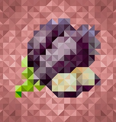 Triangle low poly eggplant icon vector image vector image