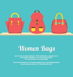 Colorful Women Handbags Display On Shelf vector image