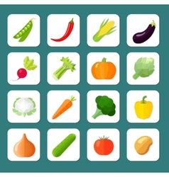 Vegetables Icon Flat vector image