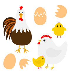 hen rooster cock chicken broken cracked egg bird vector image