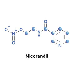 nicorandil is a vasodilatory drug vector image
