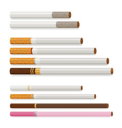 Realistic cigarette set vector