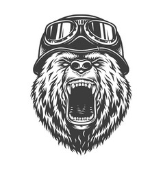 Angry Bear Vector Images (over 1,600)