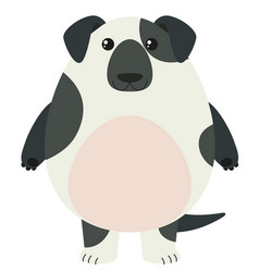 black and white dog with happy face vector image