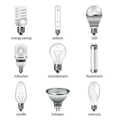 different lightbulbs icons set vector image vector image