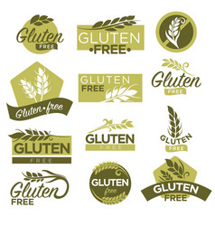 Gluten free healthy dietetic product icons vector