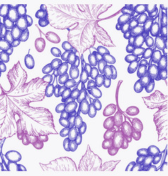 Grape design template hand drawn grape berry vector