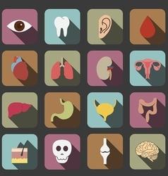 Human organs icon vector