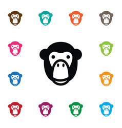 isolated ape icon monkey element can be vector image