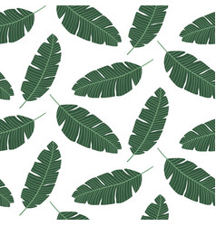 seamless pattern with banana leaves tropical vector image