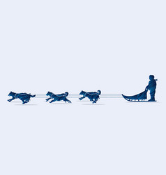 Sled dogs graphic vector