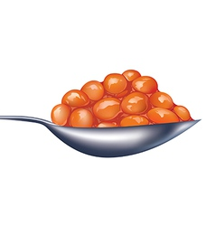 The spoon of bean in vector image