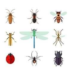 Icon set of insects in flat style vector image