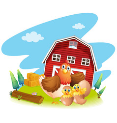 chicken and chicks on the farm vector image