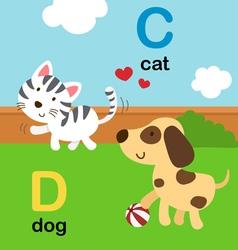 Alphabet c d vector