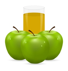 Apple and glass of juice vector