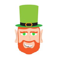 Avatar of a scared irish elf vector