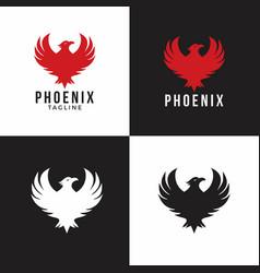eagle graphic animal logo vector image