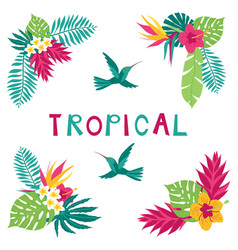 floral paradise hand drawn summer tropical corner vector image