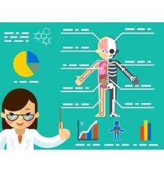 Medical concept Doctor woman showing anatomy vector image