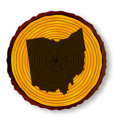 Ohio map on timber vector