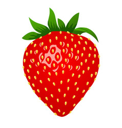 raw strawberry 3d stile vector image