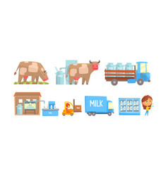stages milk production set vector image