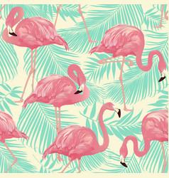 Tropical bird flamingo vector