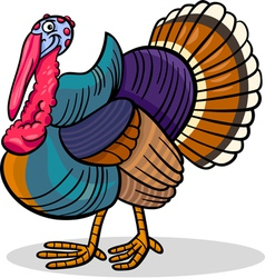 Turkey farm bird animal cartoon vector